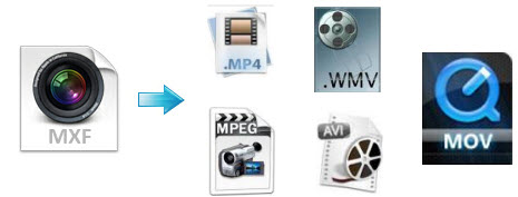 mxf to different file formats MXF Column